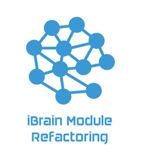 Support improvement of  modules of the iBRAIN services for large scale image analysis for the Pelmanslab, UZH.