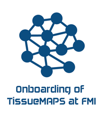 Coordination of the onboarding of the research group of Prof. Liberali group at FMI on the use of TissueMAPS for pre-processing and accessing data produced by in-house equipment.