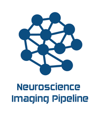 Porting of an image processing pipeline for Neuroscience data to a new cloud infrastructure at UZH for the Helmchen lab.