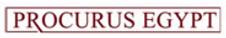 Procurus egypt Logo.png
