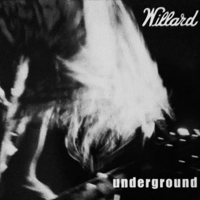 From the same Grunge Scene as Soundgarde
