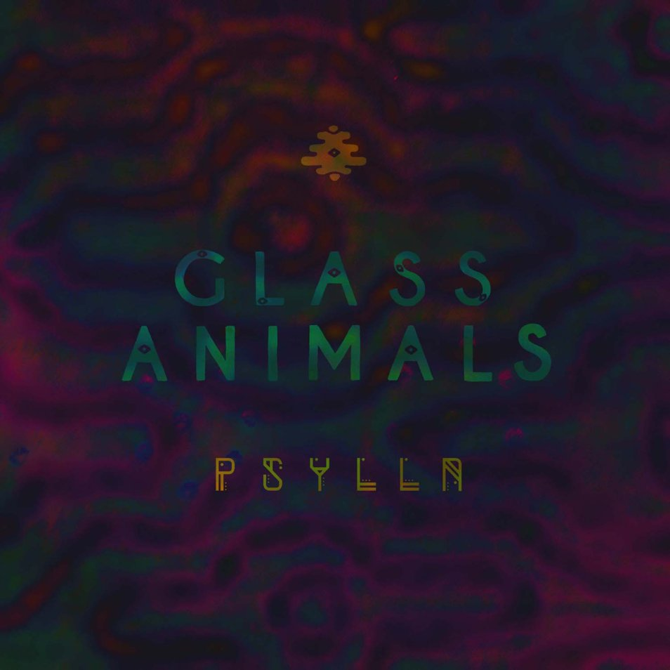 Glass Animals 'Psylla'