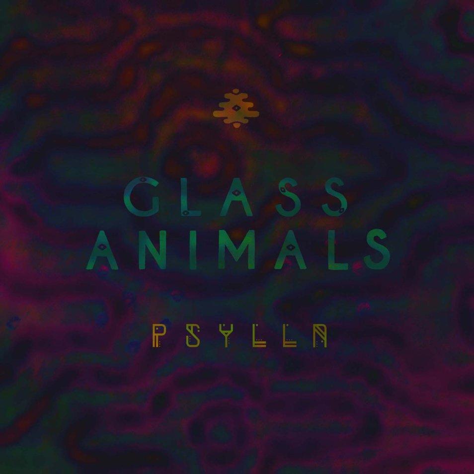 Glass Animals 'Psylla'