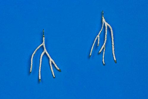 Coral, Two Earrings