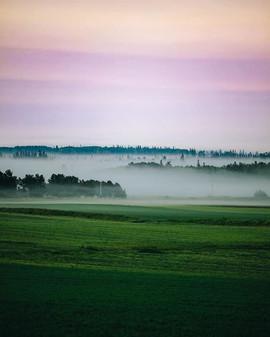 Island fog.jpg