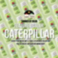 Caterpillar-Title-Page.jpg