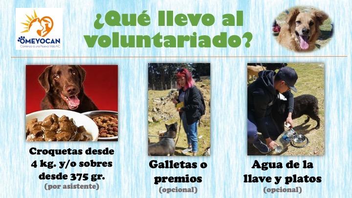 Voluntariado_qué_llevar.JPG