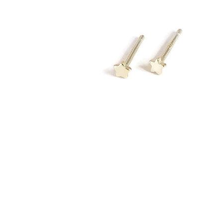 Brincos Etoile  (Unidade ou Par)