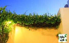 jardin1 (7 de 5).jpg