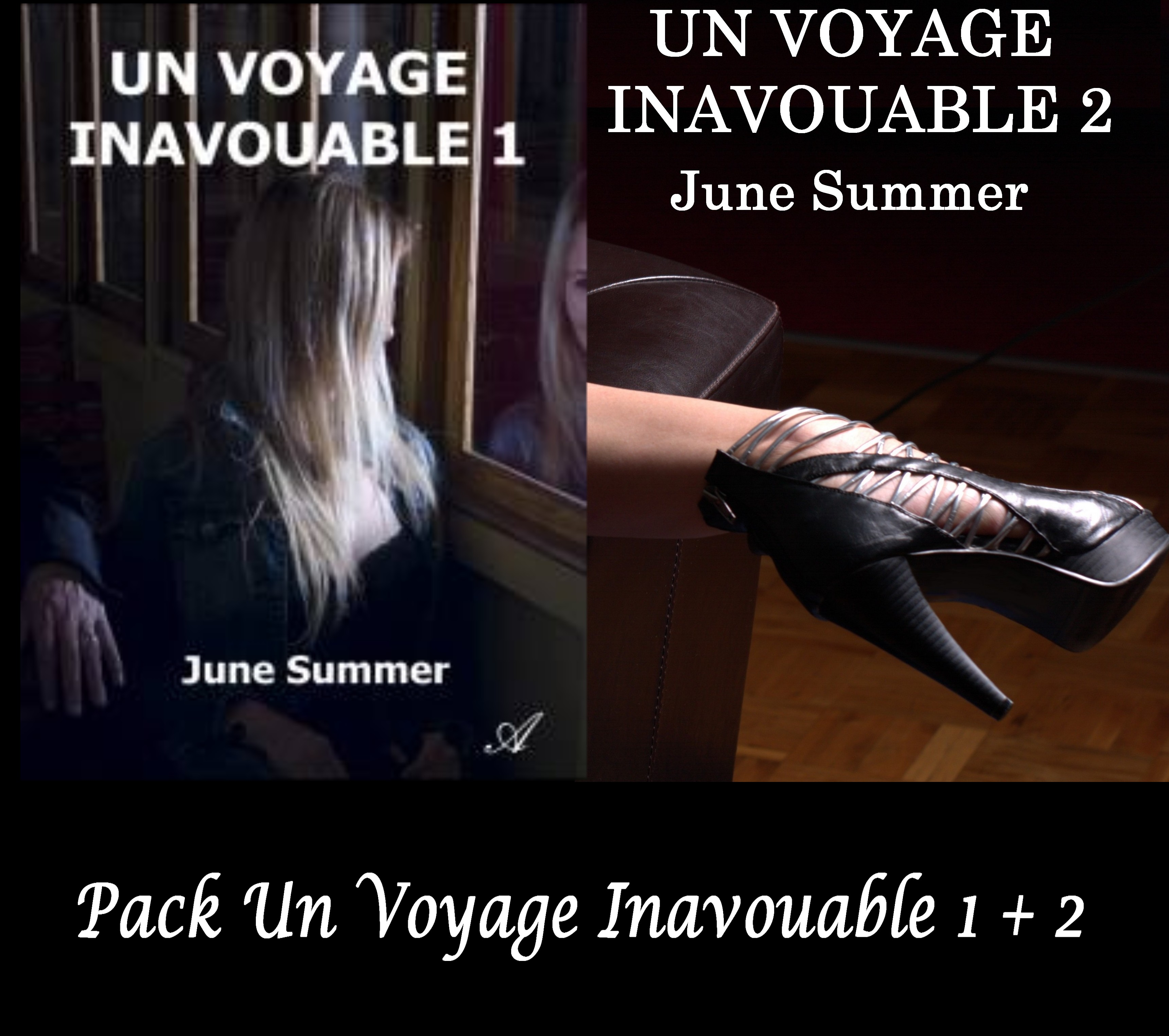 Pack Voyage Inavouable  22,90