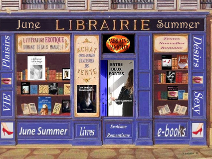44. Ma librairie érotique-romantique