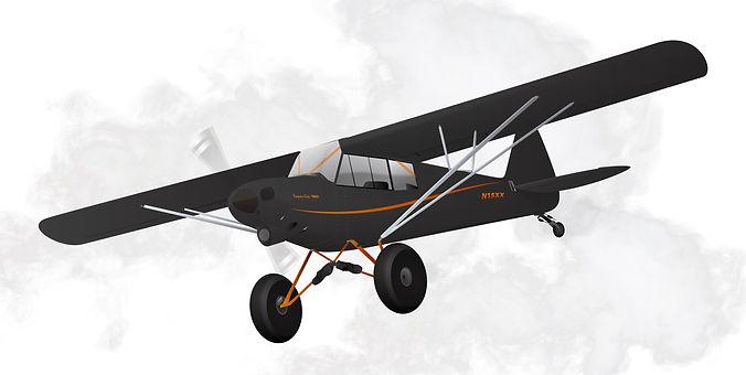 Raffle plane.jpg