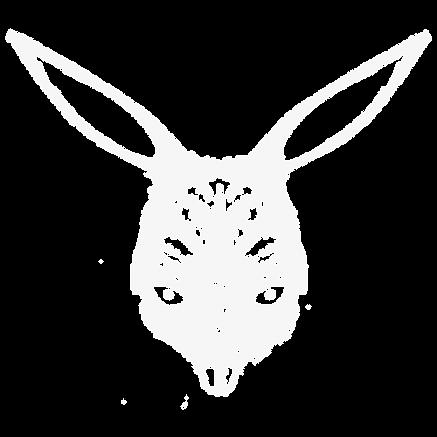 rabbit_500x500.png