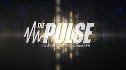 Pulse_Endscreen
