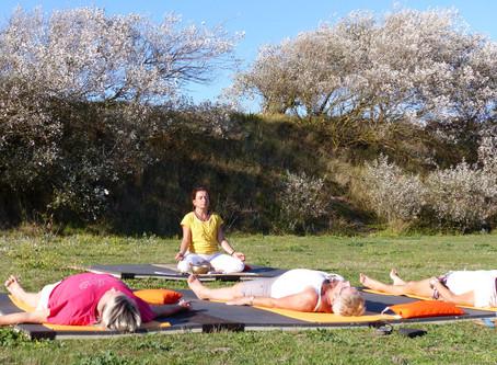 cours de Yoga d'été