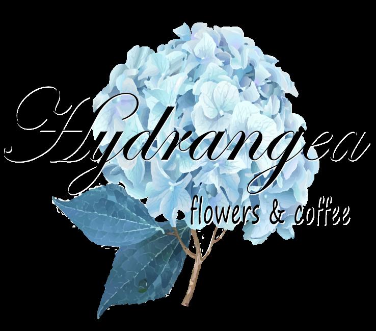 Hydrangea Flowers & Coffee