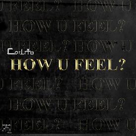 Carlito How U Feel Cover (2019 S.N.B.JR.