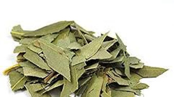Eucalyptus feuilles bio