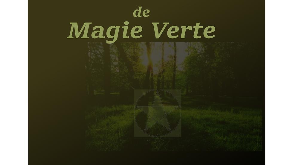 Grimoire de magie verte vierge