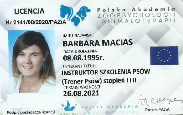 licencja.jpg