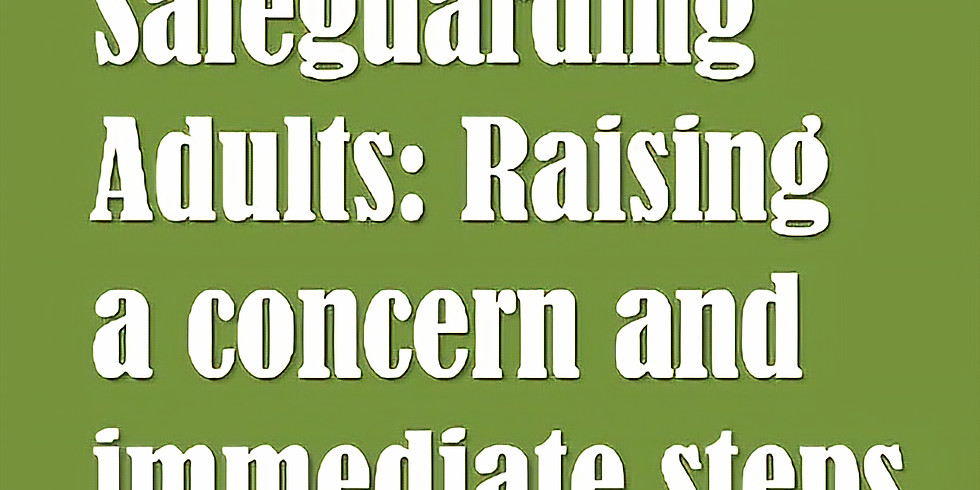 Safeguarding Adults: Raising a Concern and Immediate Steps for Voluntary Sector and Small Organisations