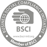 logo bsci.png