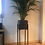 Thumbnail: The Piccadilly. Extra Tall Planter
