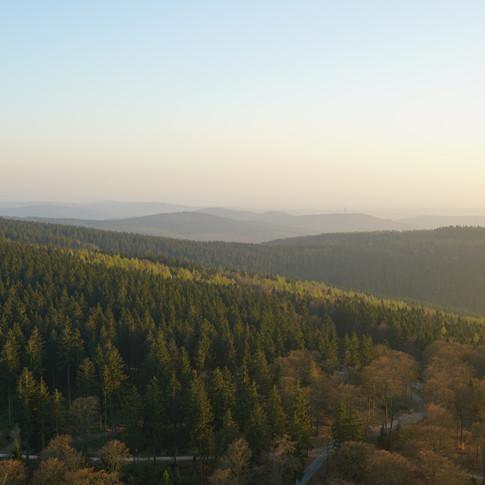 Blick vom Feldberg Richtung Mainz