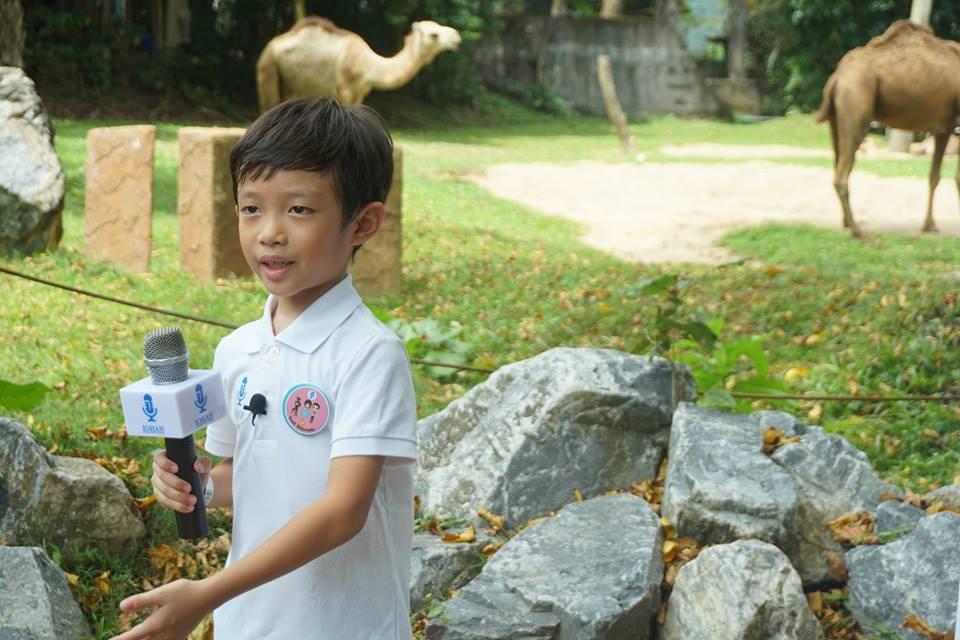 kiddos zoo johan speaking academy (12).j