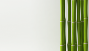 Organic, eco-friendly bamboo baby products