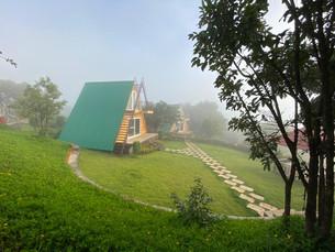 Fogg View