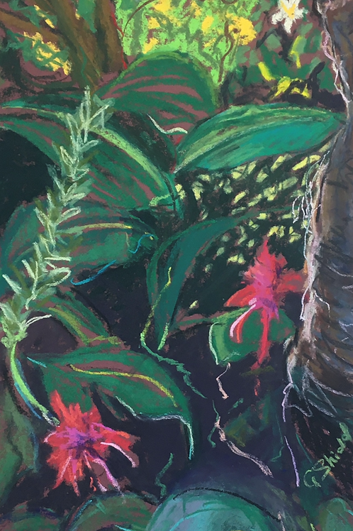 Dungog Garden 2 - Artist: Gaye Shield