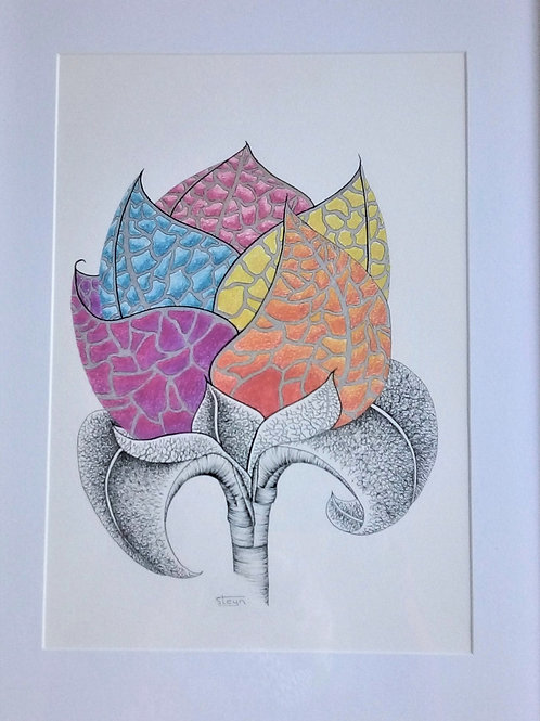 New Bloom - Artist: Barbara Steyn