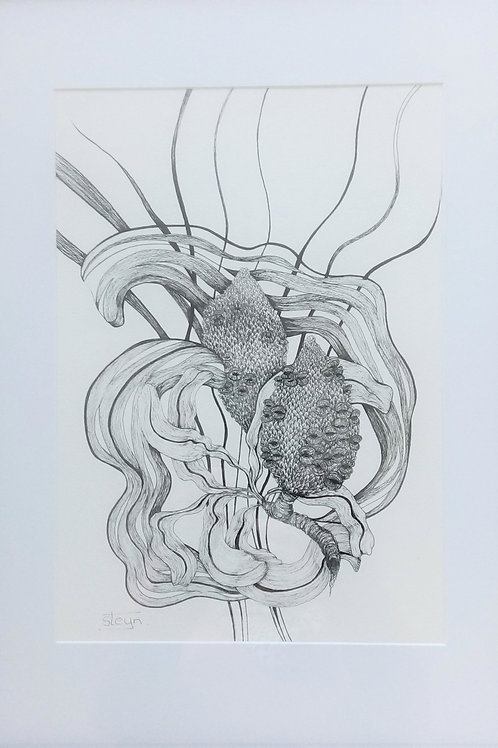 Banksia Boys - Artist: Barbara Steyn