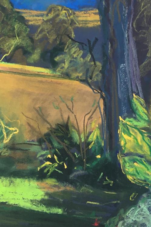 Dungog Garden 1 - Artist: Gaye Shield
