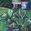 Thumbnail: Dungog Garden 3 - Artist: Gaye Shield