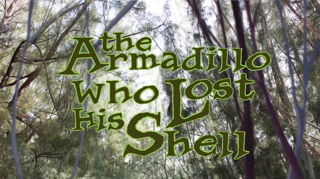 The Armadillo Who Lost His Shell