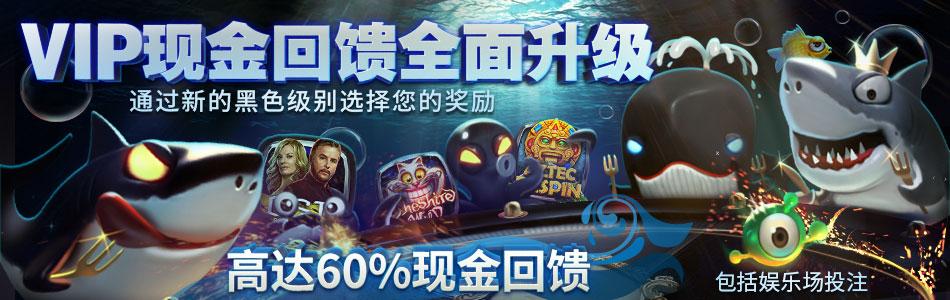 wix_fishbuffet2_cn.png