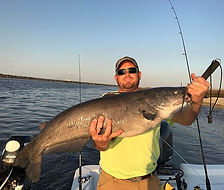 Monster catfish caught while on an inshore fishing charter