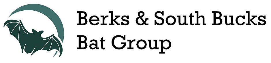 bat group logo large 2 lines.jpg