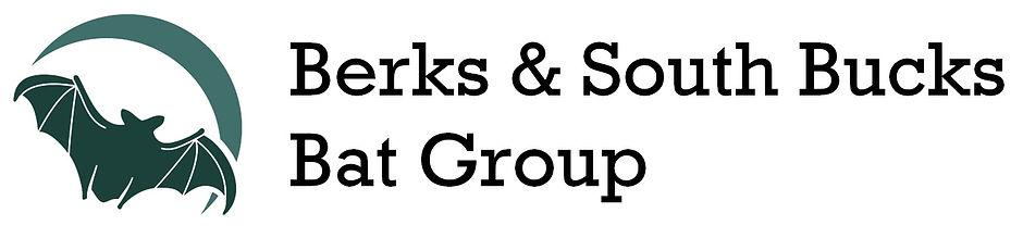 bat group logo large 2 lines.jpg