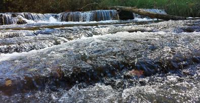 Abrams Falls Creek.