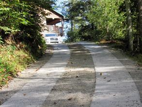 Concrete Strip Driveway
