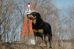 Jessy+lighthouse.jpg