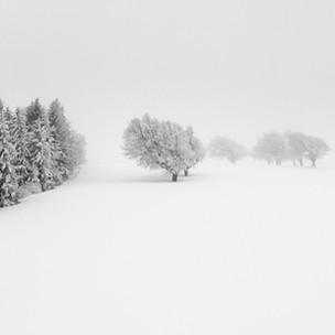 #60 | Winter