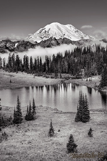 Tipsoo lake and Mt Rainier in Mount Rainier National Park, Washington State, America. Michael Scott Lees fine art photograph