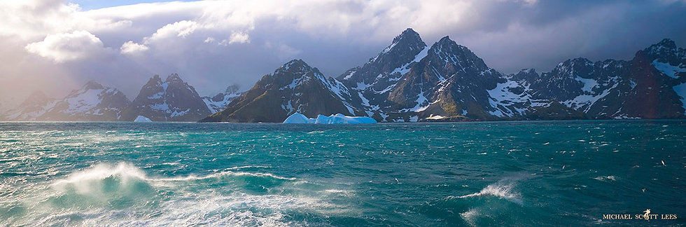 Emerald waters off South Georgia Island near Antarctica. Fine Art Photography Prints for Sale by Michael Scott Lees photo