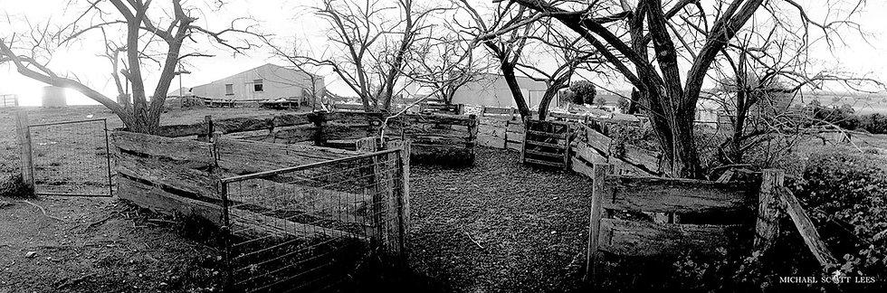 Sheep yards at Stockinbingal, Australia. Fine Art Photography Prints for Sale by Michael Scott Lees photographer.