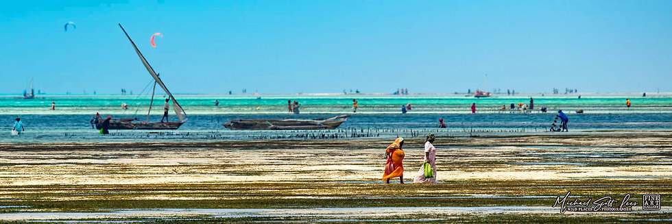 Coastal life in Zanzibar, Tanzania, Africa, Michael Scott Lees fine art photographic prints for sale