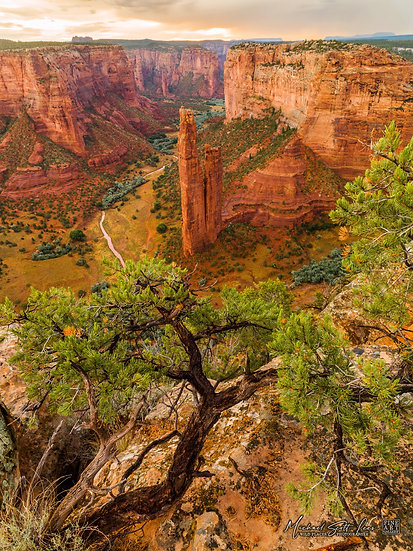 Canyon De Chelly National Monument, Arizona, USA - Code: DE6576276MT